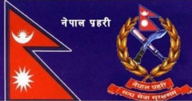 नेपाल प्रहरीका दर्जा चिन्ह र संकेतहरु