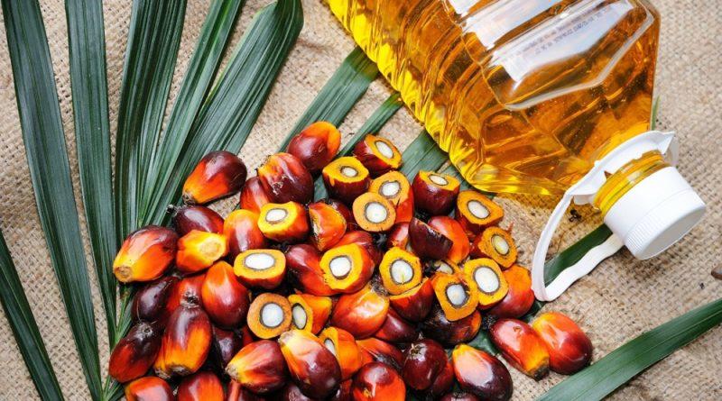 लिपुलेक प्रकरणपछि भारतले रोक्यो नेपालबाट हुने पाम तेलको निर्यात